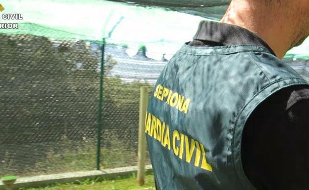 Un agente del Seprona. /Guardia Civil