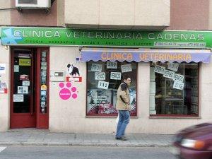 Antirrabica A Dos Euros En Zamora El Norte De Castilla